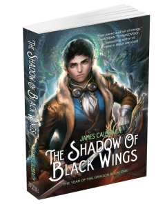 Yaldā Advent Calendar 2012 – Day 14 – Shadow of Black Wings FREE