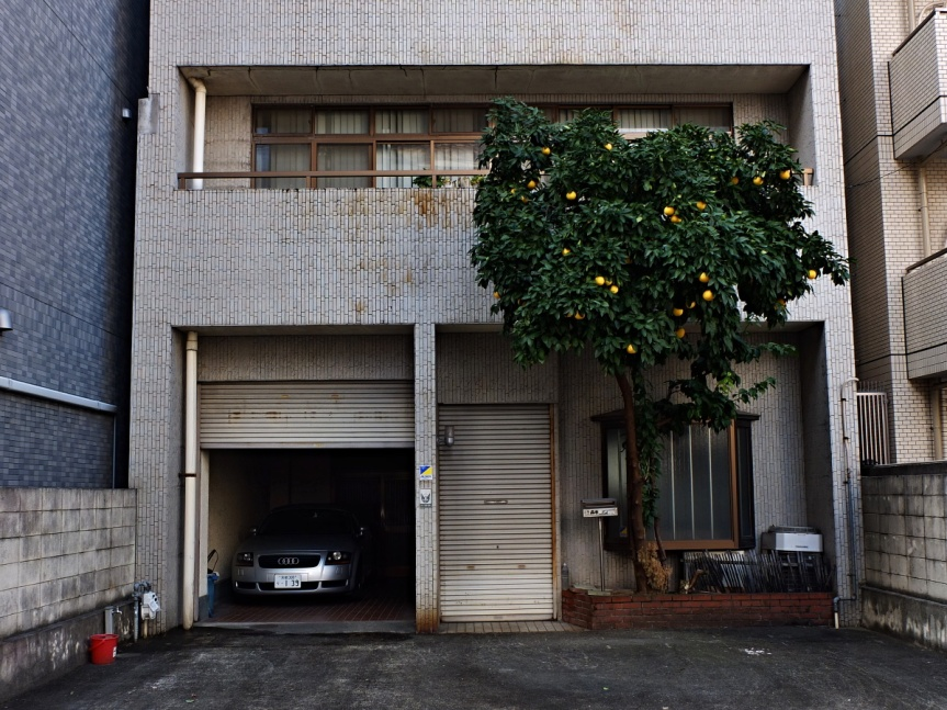 The mystery of Japanese TiledHouses